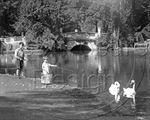 Picture of Glos - Cheltenham c1930s - N694