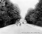 Picture of Kent - Beckenham, Beckenham Lane 1910s - N1607