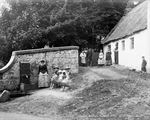 Picture of Scotland - Fenwick, Family Cottage c1890s - N1594